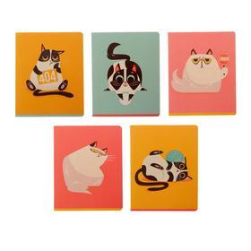 Тетрадь 48 листов в клетку «Мрачный кот», картонная обложка, блок офсет, МИКС