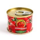 Tomato paste TOMATO 70g W/W