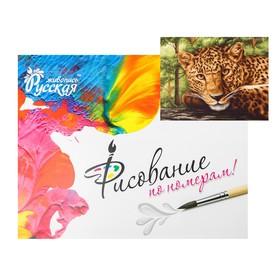 Картина по номерам «Грациозный ягуар « 40 × 50 см