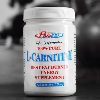 L-Carnitine 100% Pure, 120*750, 102 g