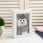 """Piggy Bank plastic interior """"Sad cat in a scarf"""" 17х12х3,8 cm"""