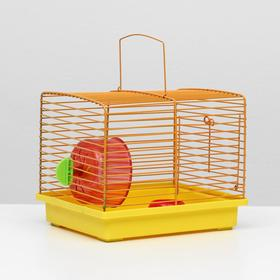 Клетка для джунгариков малая, комплект, 23 х 18 х 19 см, жёлтый/оранжевый