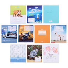 Тетрадь 24 листа в клетку «Ассорти», обложка мелованный картон, блок офсет, МИКС