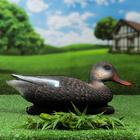 "Figure decoy ""Mallard black duck"""