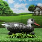 "Figure decoy ""Duck gray duck"""