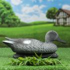 "Figure decoy ""grey Duck"" Drake"