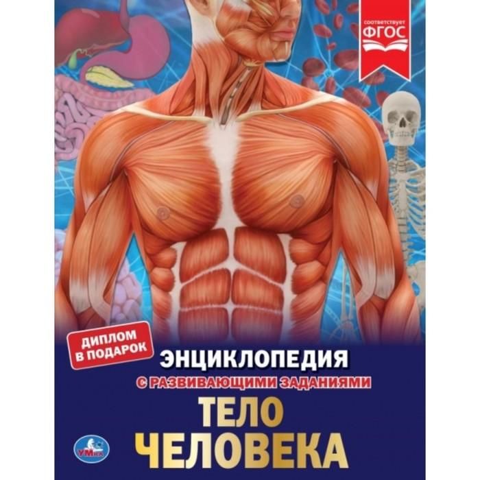 Энциклопедия «Секреты тела человека», 48 стр. - фото 965427
