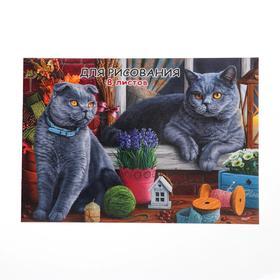 Эскизник А4, 8 листов на скрепке «Коты на подоконнике», бумажная обложка, блок 100 г/м2