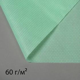 Материал укрывной, 3,2 × 6 м, плотность 60, с УФ-стабилизатором, изумрудный, «Спанграм»