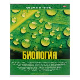 Тетрадь предметная 48 листов в клетку «Эрудит. Биология», обложка мелованный картон, блок офсет
