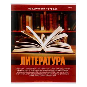 Тетрадь предметная 48 листов в линейку «Эрудит. Литература», обложка мелованный картон, блок офсет