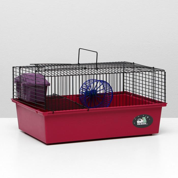 """Клетка для грызунов """"Пижон"""" №4, с этажом, укомплектованная, 37 х 26 х 18 см, рубиновая"""