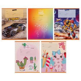Тетрадь 12 листов в линейку «МИКС-23», обложка мелованный картон, блок офсет, МИКС
