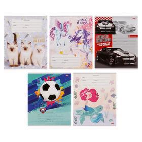 Тетрадь 12 листов в косую линейку «Микс-22», обложка мелованный картон, блок офсет, МИКС