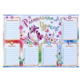 """Плакат """"Расписание уроков"""" птичка, цветы, А4"""