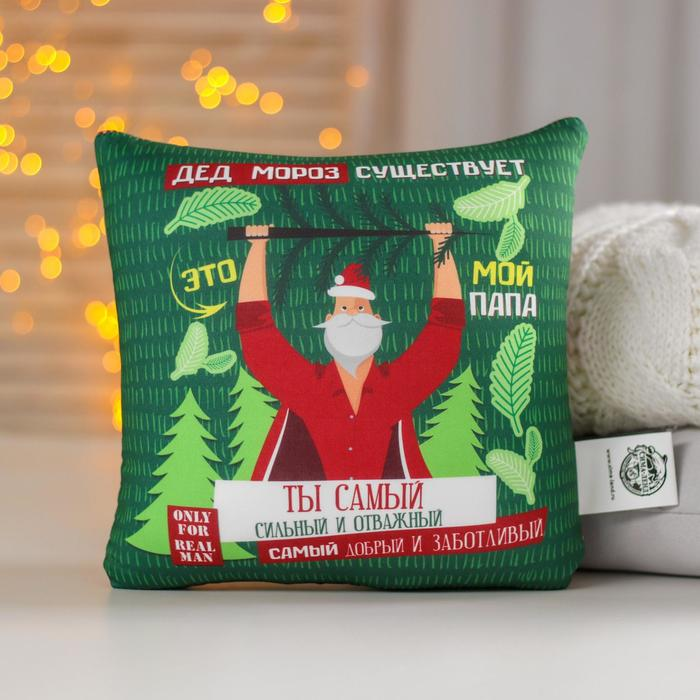 Подушка-антистресс «Дед Мороз существует», 20х20 см