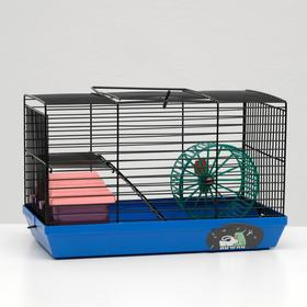 """Cage-mini for rodents """"Dude"""" №2, complete, 27 x 15 x 16 cm, blue"""