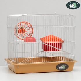 """Клетка для грызунов """"Пижон"""" №3, с 2-я этажами, укомплектованная, 33 х 24 х 28 см, бежевая"""