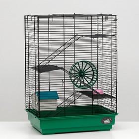 """Клетка для грызунов """"Пижон"""" №5, с 3 этажами, укомплектованная, 41 х 30 х 58 см, зелёная"""