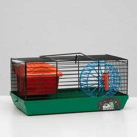 """Клетка-мини для грызунов """"Пижон"""" №1, укомплектованная, 27 х 15 х 13 см, зелёная"""