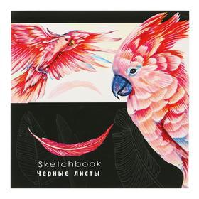 Скетчбук 160 х 160 мм, 64 листа «Рисунок попугая», твёрдая обложка, чёрный блок