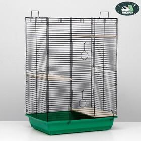 """Клетка для шиншилл """"Пижон"""" №7, с 3-я деревянными этажами, 58 х 40 х 82 см, салатовая"""