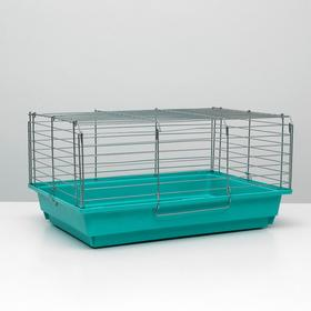 """Клетка для кроликов, морских свинок """"Пижон"""" №6, хром, 58х40х30 см, бирюзовая"""