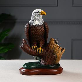 """Сувенир """"Орел на ветке"""", акрил, цвет разноцветный, 32 см"""