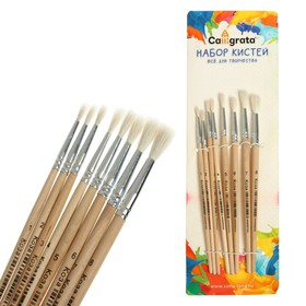 Набор кистей коза круглые 8 штук (№1,2,3,4,5,6,7,8) с деревянными ручками на блистере