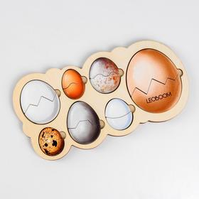 Рамка-вкладыш «Кто живет в яйце?»