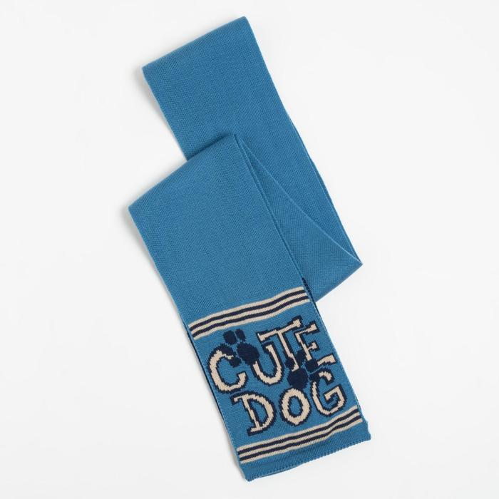 Шарф для мальчика, цвет голубой, размер 134х13 - фото 105568240