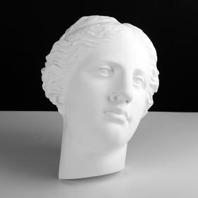 Гипсовая фигура Маска Венеры, 24 х 16 х 33 см