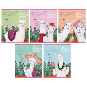 Тетрадь 12 листов в клетку «Кактусы и ламы», обложка мелованный картон, блок офсет, МИКС