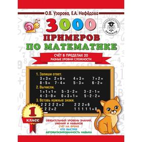 3000 examples in math. The score is within 20. Different levels of difficulty. 1 class