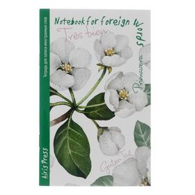 Тетрадь для записи иностранных слов А6, 32 листа «Жасмин», обложка мелованный картон, глянцевая ламинация