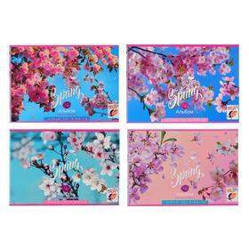Альбом для рисования А4, 16 листов на скрепке Spring bloom, обложка мелованный картон, блок 100 г/м2, МИКС