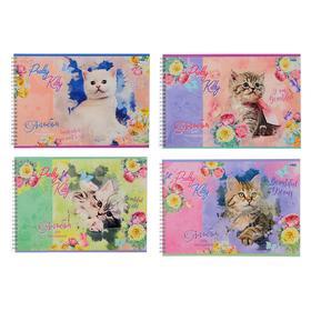 Альбом для рисования А4, 48 листов на гребне «Котёнок», обложка мелованный картон, блок 100 г/м2, МИКС