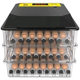 Инкубатор автоматический 'SITITEK 196' на 196 яиц, 220 В Ош