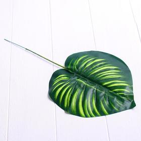 Лист искусственный «Драцена», 40 × 13 см