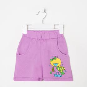 Шорты для девочки, цвет фиолетовый, рост 104 см