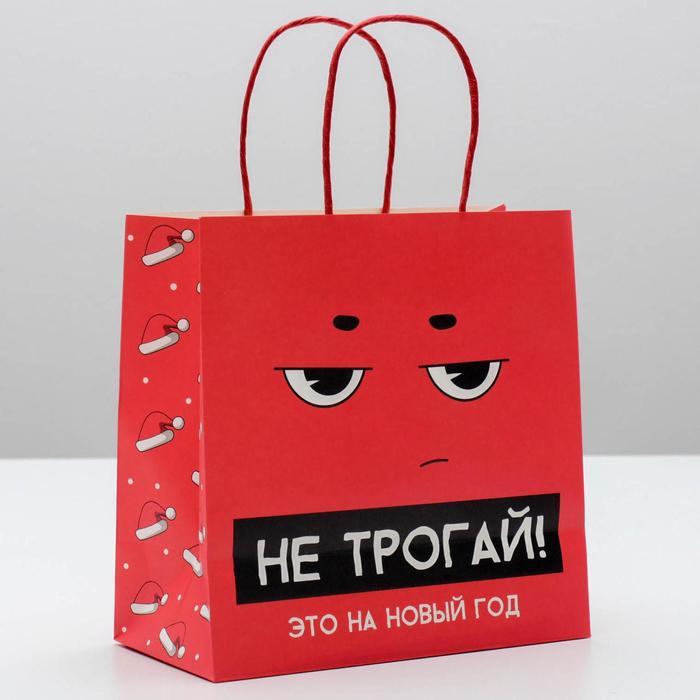 Пакет подарочный «Это на новый год», 22 × 22 × 11 см