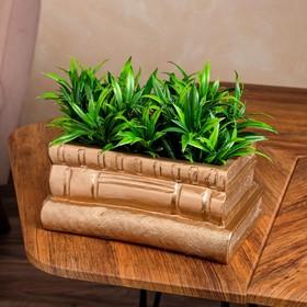 "{{photo.Alt || photo.Description || 'Кашпо ""Стопка книг"" 1 л, цвет золото'}}"