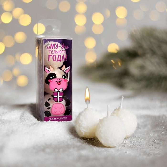 Свечи «Заму-учательного года!», 3 шт, 9 х 3,3 х 3,3 см - фото 503511
