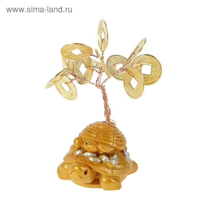 "Денежное дерево ""Черепахи"""