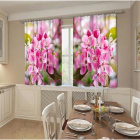 Фотошторы кухонные «Розовая яблонька» 145х160см- 2 шт