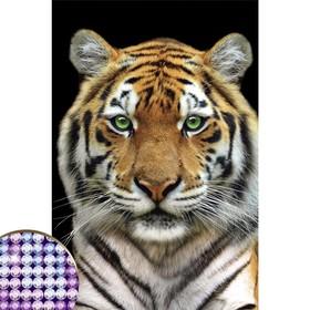 """Алмазная вышивка с частичным заполнением """"Тигр"""" 20*30 см на холсте"""