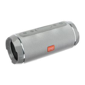 Портативная колонка Accord SK1018GY, microSD/USB/FM, Bluetooth 5.0, 2х5 Вт, 1200 мАч, серая