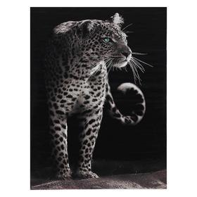 Picture of Jaguar 30*40 cm