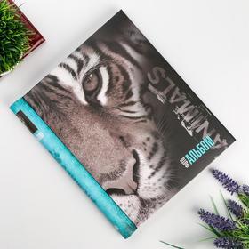"""Фотоальбом магнитный 23Х28 см 10 листов """"Тигр"""""""