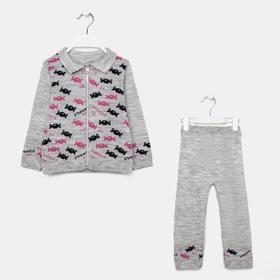 Комплект (джемпер, штаны) для девочки, цвет серый, рост 80 см